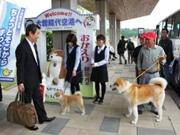秋田犬が到着旅客を出迎え 大館能代空港