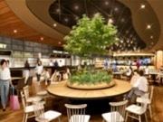 福岡空港に大型フードホール「ザ・フードタイムス」 九州の人気8店集積