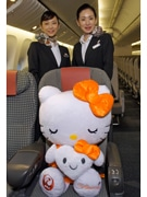 Kitty Profile on JAL Aircraft with Special Livery to Raise Cervical Cancer Prevention Awareness