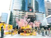 赤坂サカスに「花見こたつ」 広場に15台のこたつ設置