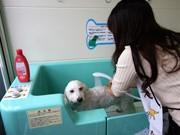 雄琴にペット用セルフ式コインシャワーシステム-滋賀県で初導入