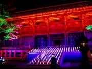 比叡山延暦寺がライトアップ-大学生によるオブジェのライティングも