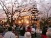 天孫神社夜桜コンサート「花あかり」開催―境内を一般開放