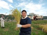 調布で米穀店の社員ら育てた米を商品化-「山田屋田んぼプロジェクト米」