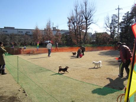 調布・初春の欧風庭園で期間限定「ドッグガーデン」