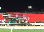 「DUBAI WORLD CUP」閉幕 日本馬2レースで優勝