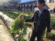 西船橋で体験農園 農家と一緒に野菜栽培を体験、会員募集開始