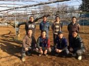 船橋の若手梨農家「研究部」が組織改変 生産技術向上や新商品開発に挑む