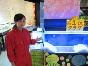 八戸水産科学館マリエントで「卒業おめでとう展」 子どものリクエストに応じて展示