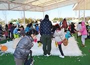 浜名湖ガーデンパークで本物の雪が楽しめるイベント 長野から60トン輸送