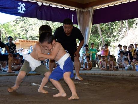 高山で「ちびっ子相撲 夏場所」 65人が参加、豆力士が熱戦
