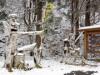 飛騨に「冬将軍」到来-山間部で降雪や路面凍結、早めの冬タイヤ装着を