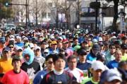 世界遺産姫路城マラソン、1万1300人が参加 7061人がフルマラソン完走