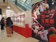 広島・駅前福屋で「カープ写真展」 プロ野球開幕に合わせて開催へ