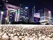 香港政府庁舎前の公園がバラで埋め尽くされる バレンタインに併せ