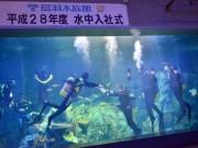 鳥羽水族館で恒例「水中入社式」 今年10回目、3人が挑む - 伊勢志摩経済新聞