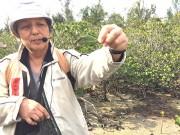 石垣の湿地帯「名蔵アンパル」で自然観察会 ラムサール条約締結日記念して