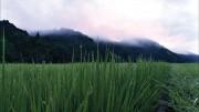 板橋区立グリーンホールで「天に栄える村」上映会 福島の農村の今伝える講演も