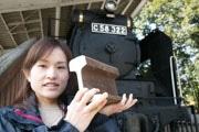 三島・楽寿園でスマイル鉄道フェスタ 「鉄分多め」写真企画も
