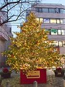 自由が丘南口で天然クリスマスツリー点灯式−桑山哲也さんのライブも