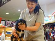 鹿児島で女性獣医師が教える「シニア犬セミナー」 敬老の日にあわせ2度目の開催