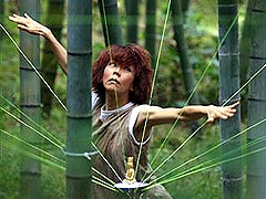 内川鎮守の森ギャラリーでは、自然を舞台にしたパフォーマンスも行われる