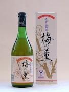 大倉山梅酒「梅の薫」 今年の新酒、恒例の観梅会でお披露目へ