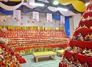 久万高原町で「くままちひなまつり」 ひな人形1万体展示