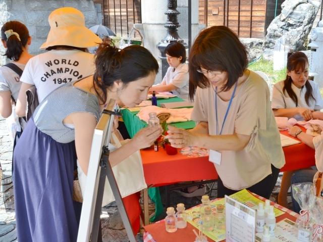 松山でツバキの花テーマのイベント ツバキ苗配布も
