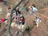 茨城県城里町でツリークライミング体験 クヌギの木に登る