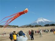 富士宮市でたこ揚げイベント 富士山を背景に「海のたこ」や15畳の「大だこ」も