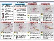 「富士山噴火時避難ルートマップ」 静岡県が初公表