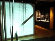 富士市に「富士山かぐや姫ミュージアム」 富士山に帰るかぐや姫の物語を目玉に