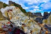 長崎在住の自然写真家が撮影の秘訣を旅番組で公開