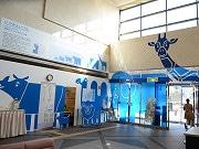 大阪市西区役所で「浸水どうぶつものさし展」 津波の高さを動物で表示