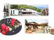石神井公園から秩父日帰り旅行 駅係員が企画、ワインや日本酒飲み比べも