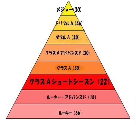 米プロ野球の各階層とチーム数