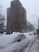 NY観測史上2番目の積雪 暖冬で安心した市民に直撃
