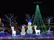 関東中央病院の「冬の癒やし」イルミが点灯 医師らによるクリスマスコンサートも