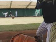 甲子園歴史館が「阪神体感する」映像公開 タイガース投手陣の速球を捕球目線で
