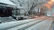 春間近の箱根、ホワイトデーに雪景色 国道の一部で交通渋滞も