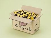 泉南で「ゆうちょ夢貯金箱展」 大阪府児童の文部科学大臣賞受賞作品も
