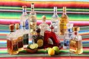 六本木に本格メキシコ料理と300種以上のテキーラを売りにしたテキーラバー