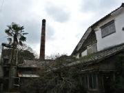 「千代雀」を千代に残そう 佐賀で廃業酒蔵の活用再生と保存考えるワークショップ