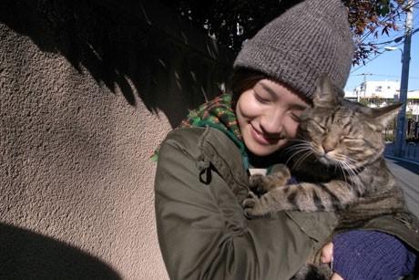 ペット動物映画私は猫ストーカー