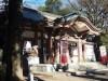 下北沢の守護神、北澤八幡神社の初詣 地元在住のイラストレーター絵馬も販売