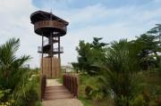 シンガポールに最大の湿地帯国立公園がオープン 鳥の観察エリアにも