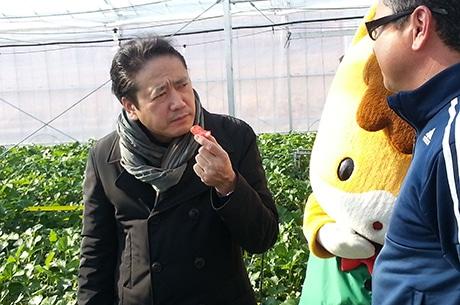 鎧塚シェフ、群馬のイチゴ園訪問 「やよいひめパフェ」間もなく解禁