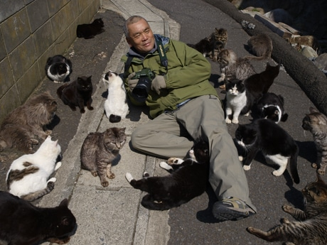 ネコ好きの岩合さんをネコに ...