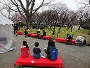 福岡・舞鶴公園に期間限定「うめCafe」 ほうじ茶など用意、写真展も